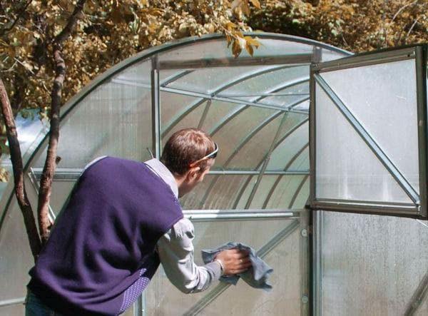 Чем обработать почву в теплице от болезней грибков и инфекций осенью