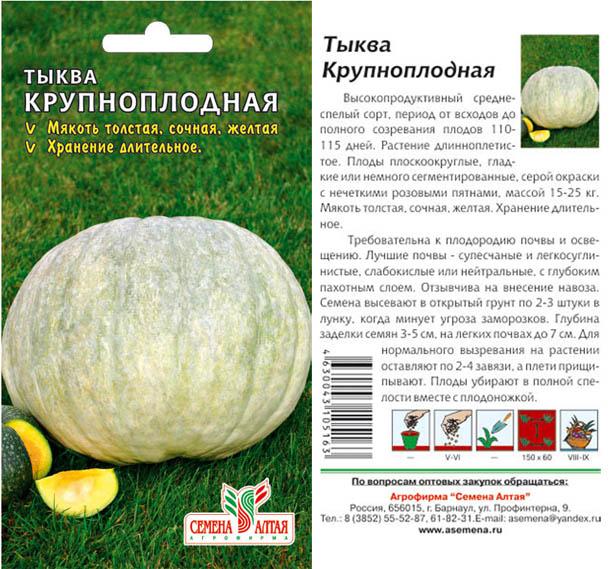 Как сажать тыкву и выращивания в открытом грунте: сроки