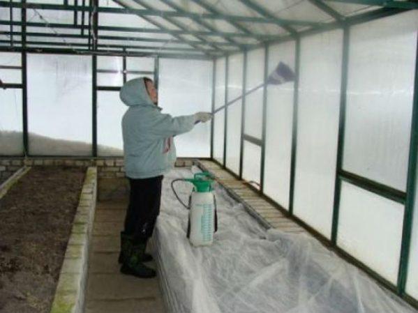 Обработка теплицы из поликарбоната весной перед посадкой