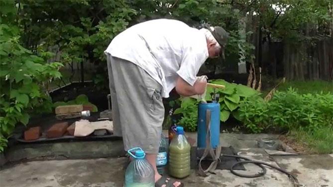 Березовый деготь в огороде: способы применения