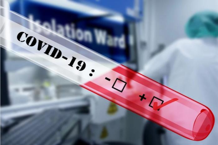 Сводка новостей о коронавирусе из Китая на 11 марта 2020 года