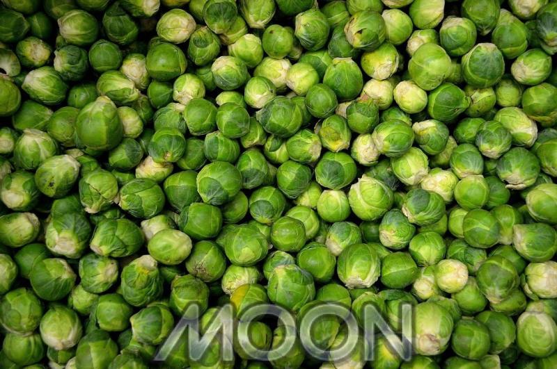 Когда солить капусту в октябре 2020 по лунному календарю
